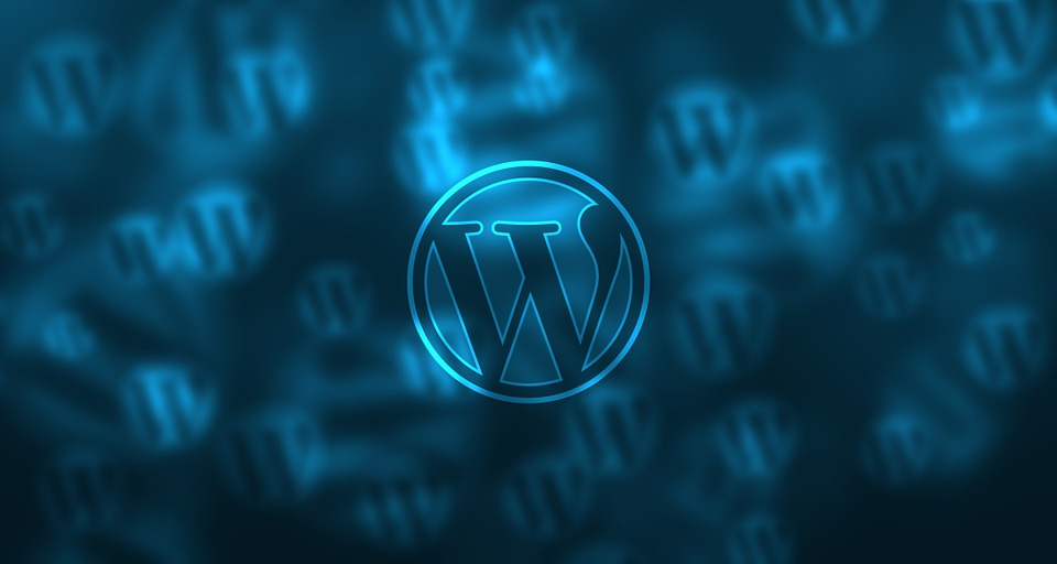 wordpress power of 30% of all website